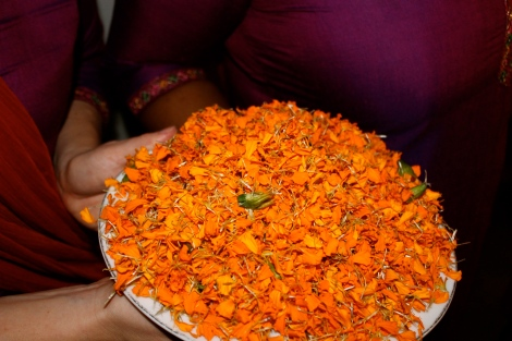 Purple and orange are popular colors and match the petals to be strewn on arriving guests.