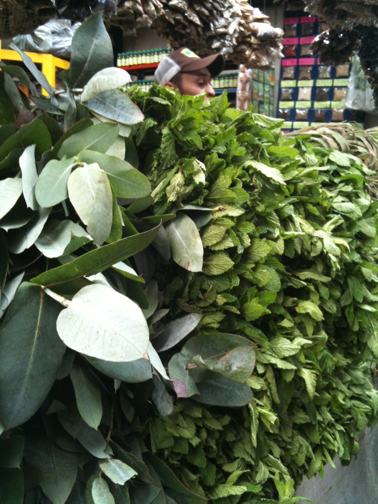 A salesman peeks out from his herb stall at Paloquemao market.