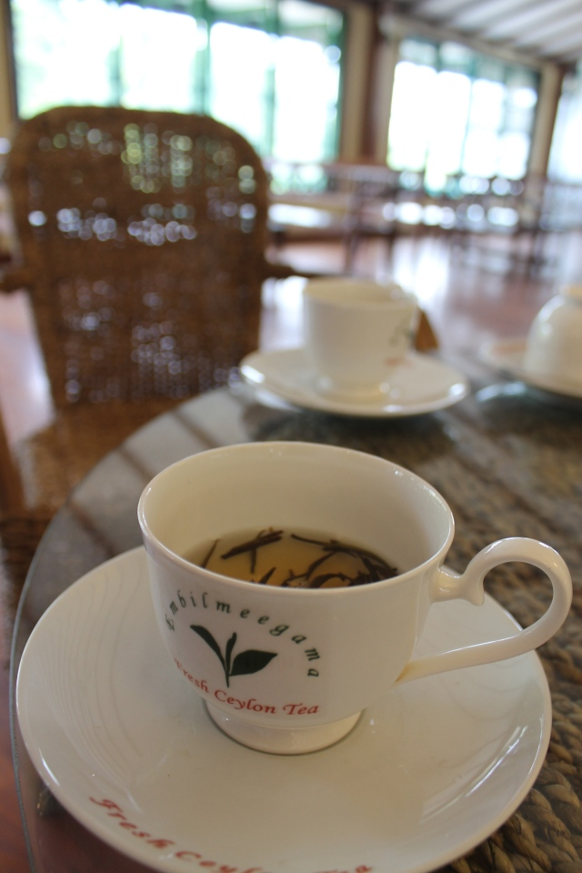 A cup of silver tip tea at the tea shop.